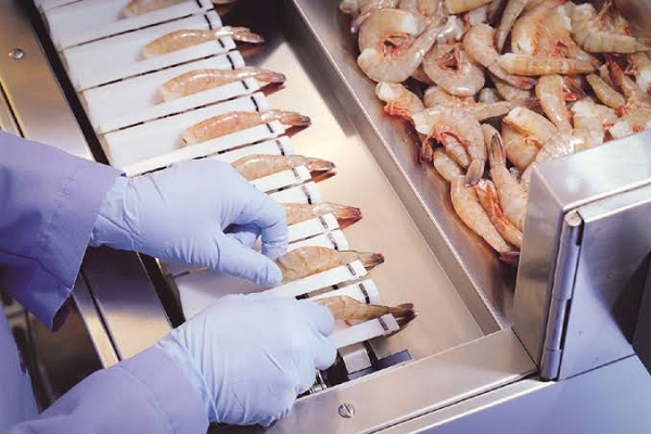 Image Featuring Shrimp Peeler In Sea Food Manufacturing Industry.